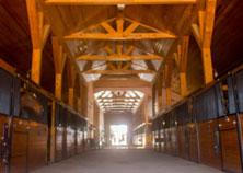 Providence Equestrian Boarding & Leasing