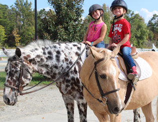 Providence Equestrian Center Camps and Parties