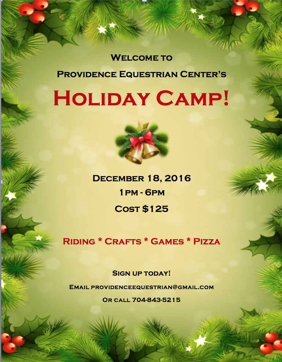 Holiday Camp!