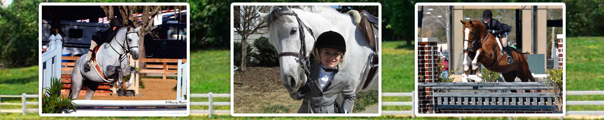 Providence Equestrian Lessons